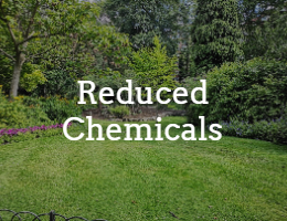 reduced chemicals by Yard Hero