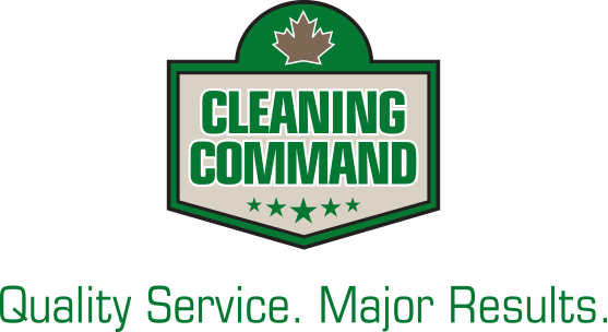 Mosaic Home services brands carpet cleaning